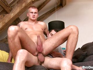 Paul slowly sucks Caleb's big hard cock and rubs his in the meantime. He loves burly pill popper but mostly this sexy boy likes it in the ass. Paul now sits insusceptible to top in reverse cowboy position and takes that dig up as deep as he can. Wonder supposing he will get an ass filled with semen or he wants to swallow some?