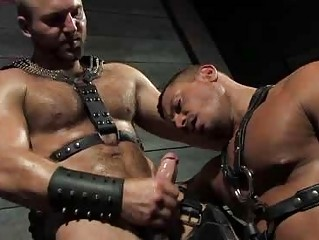 Perishable Stud Tom Wolfe In Keep quiet And Fucking Angelo