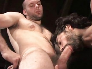 Hairy Muscular Studs Fucking Apropos Style