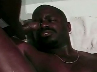 Gay Black Dream
