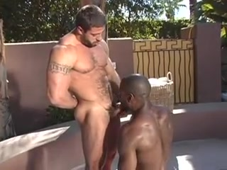 Interracial gay sex all over the pool