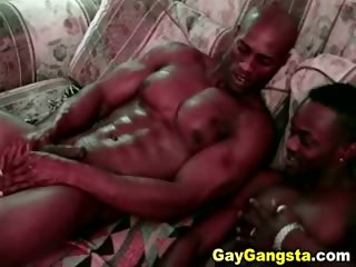 Free Big Black Gay Dicks
