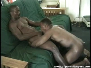 Hot black gay bodies nearby blowjob integument